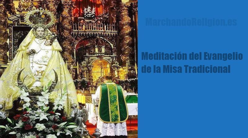 MEditacion del Padre Ricardo-MarchandoReligion.es