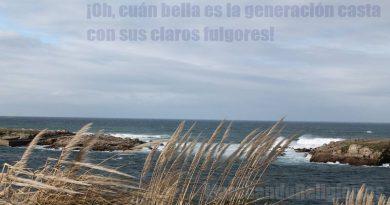 Santa Catalina de Alejandría-MarchandoReligion.es