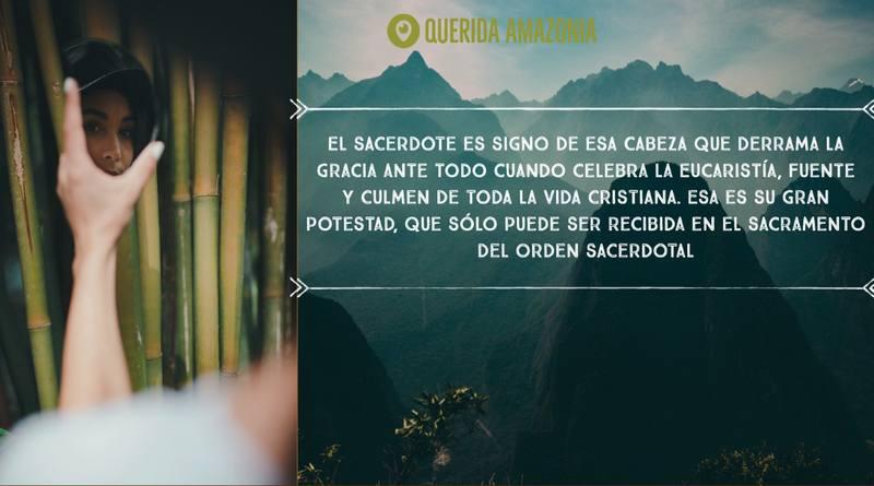 Querida Amazonia-MarchandoReligion.es