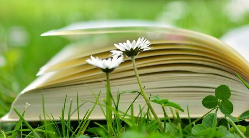 Buenos libros católicos Un deber de los padres-MarchandoReligion.es